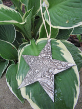 Abstract Star Ornament