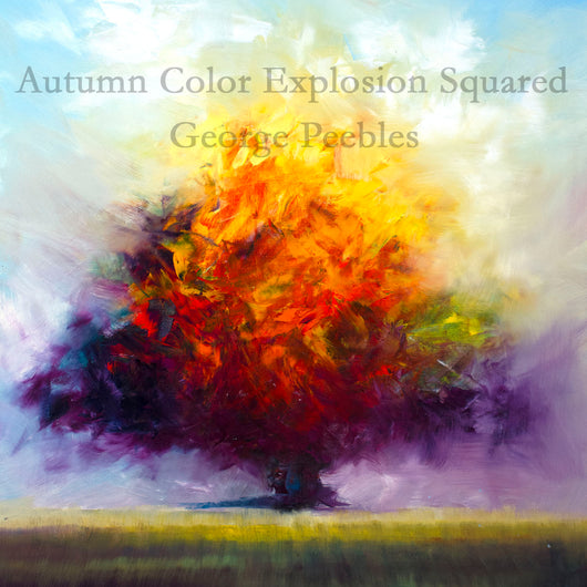 Autumn Color Explosion Squared Giclee