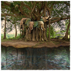 Island of Lost Elephants Giclee