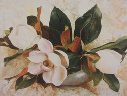 Magnolia And Lace Giclee