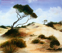 St. Georges Island Dune Giclee