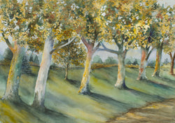 Sycamore Lane Giclee