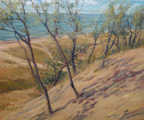 Lake Michigan Shoreline At Hoffmaster Giclee