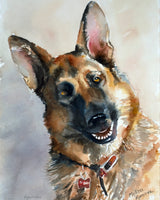 German Shepherd Giclee