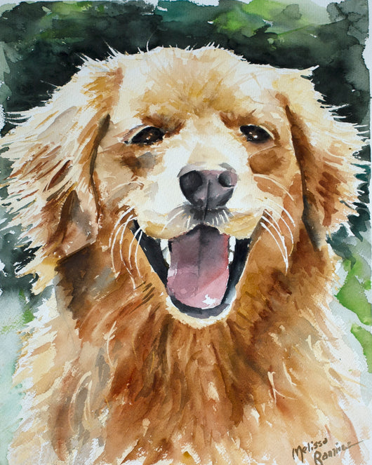 Golden Retriever Giclee