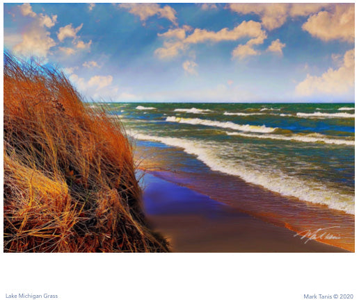 Lake Michigan Grass Giclee