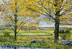 Autumn Maples In Petosky Giclee