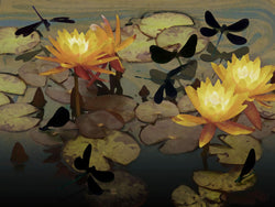 Damsel Flies And Golden Lilies Giclee