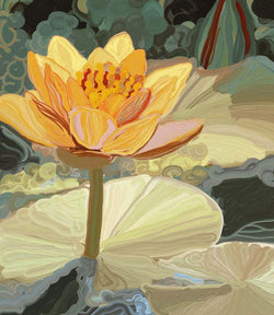 Golden Lotus Play Giclee