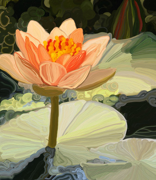 Peach Lily Giclee