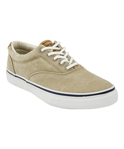 Striper CVO - Chino Salt Wash 1048065