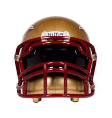 NCAA FSU Seminoles
