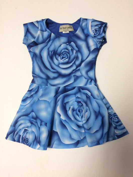 Blue Rose Short Sleeve Skater Dress