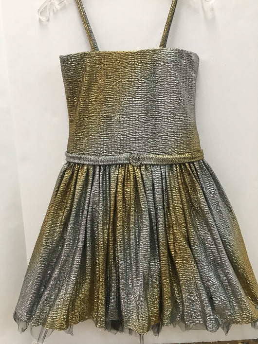 Gold/Silver Ombre Metallic Party Dress