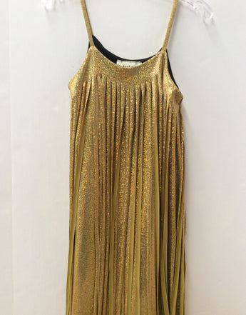 Gold Sparkle Fringe Dress