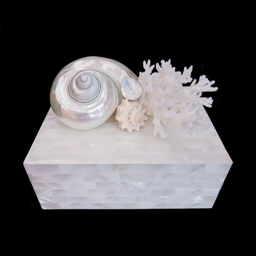 Mother of Pearl Keepsake Box White Sea Shell & Coral Cluster Featuring Swarovski © Crystal