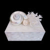 Mother of Pearl Keepsake Box White Sea Shell & Coral Cluster Featuring Swarovski ® Crystal