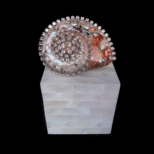 Mother of Pearl Semanticus Turbo Shell Ring Box Featuring Swarovski © Crystal