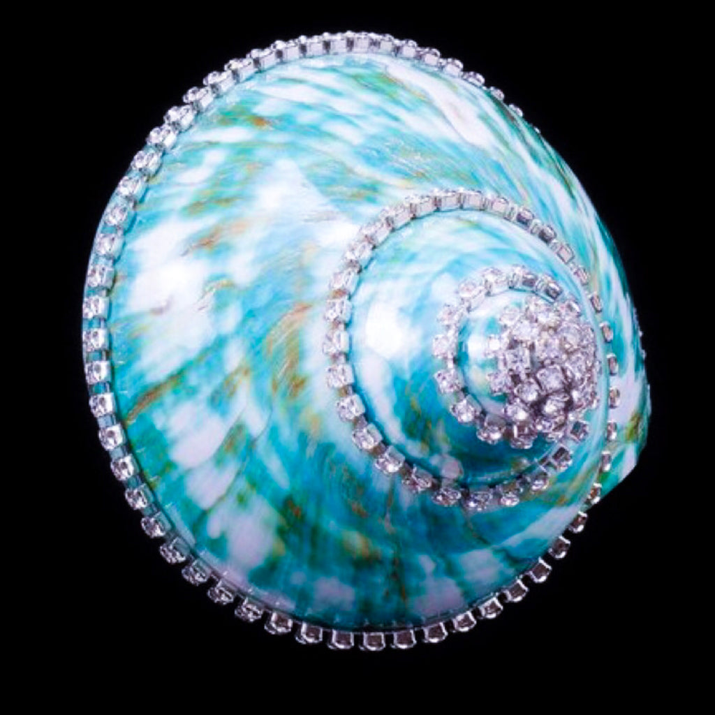 Jade Turbo Seashell Collectible featuring Swarovski ® Crystal