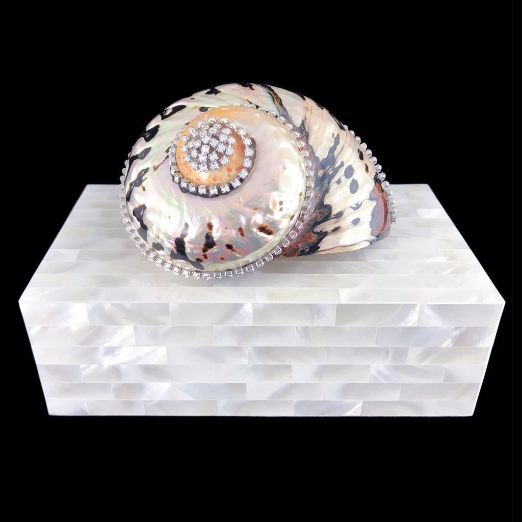 Mother of Pearl Jewelry Box with Crystallized Turbo Seamanticus Sea Shell and Swarovski © Crystals