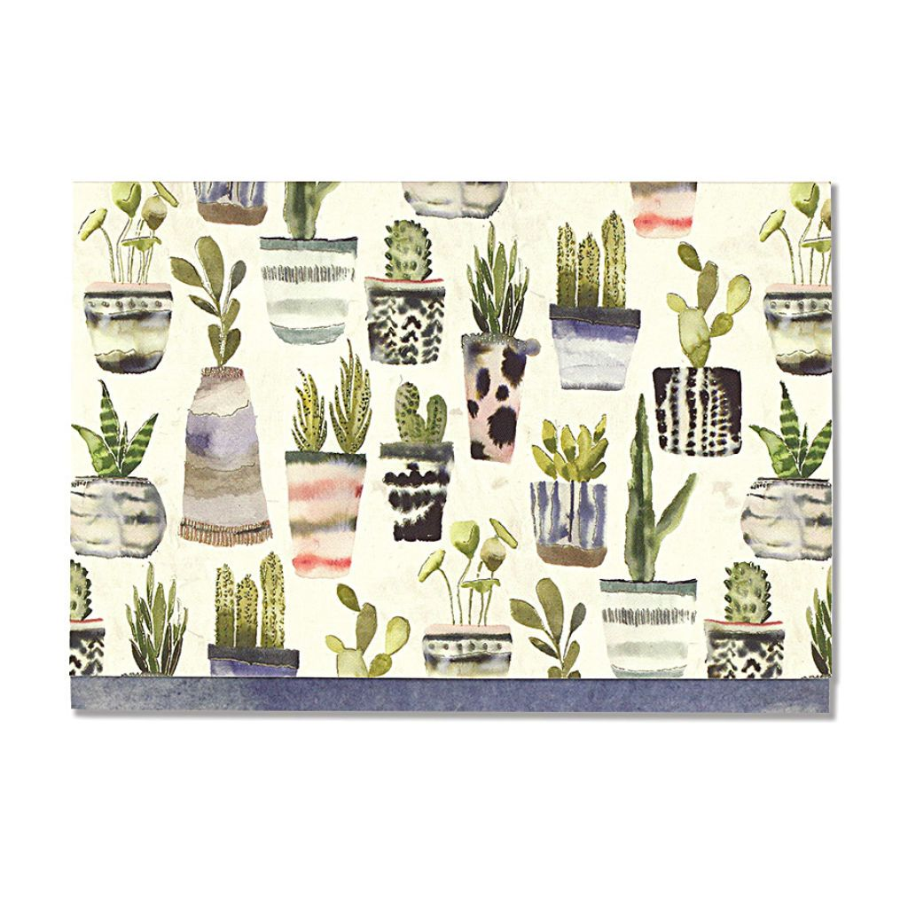 Tarjetas con sobre Watercolor Succulents