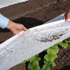 Agribon, Floating, Row Covers, Insect Control, Covers, Tarps, Agriculture, Horticulture, AG50