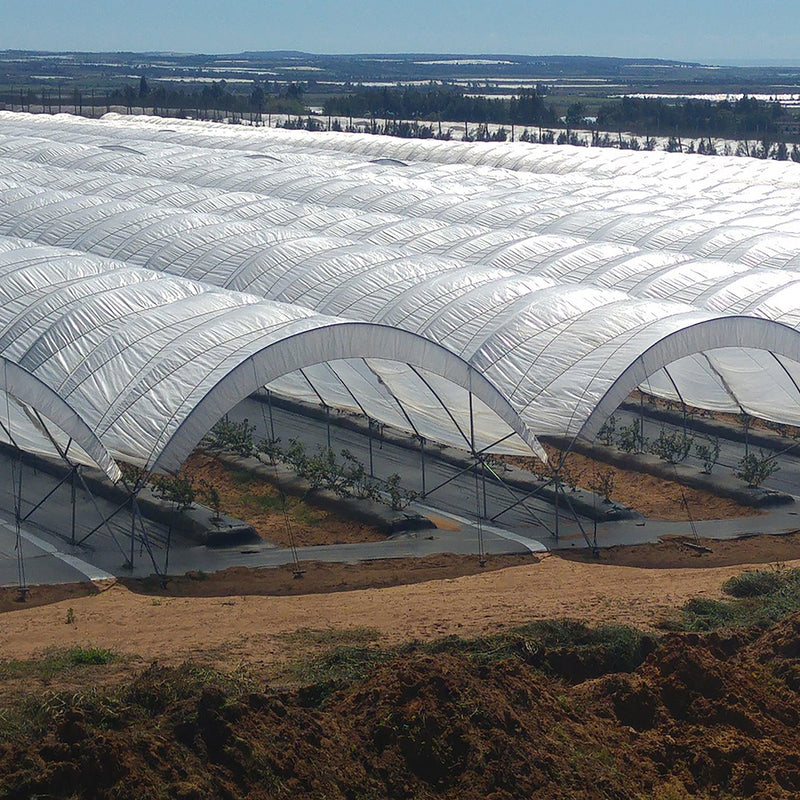 Solarig Classic 156 Woven Plastic Greenhouse Cover/Film