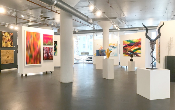 an image of the adc fine art gallery for the blink art opening