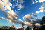 Ascending Clouds / various sizes available / photography