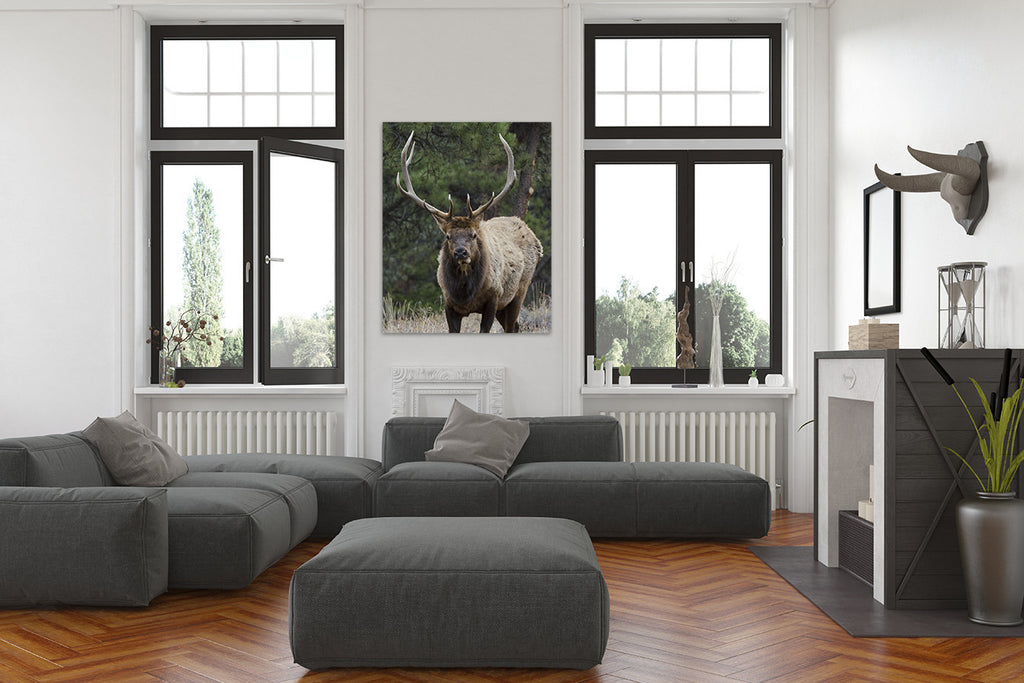 Elk 8901 / custom sizes available / custom substrates available