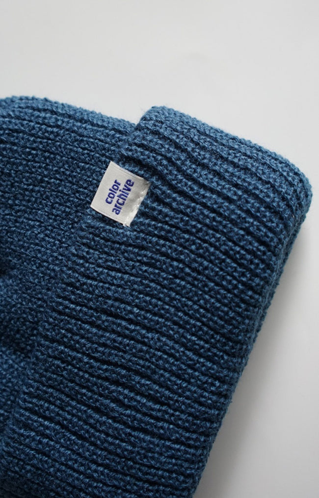 Color Archive Beanie in Blue