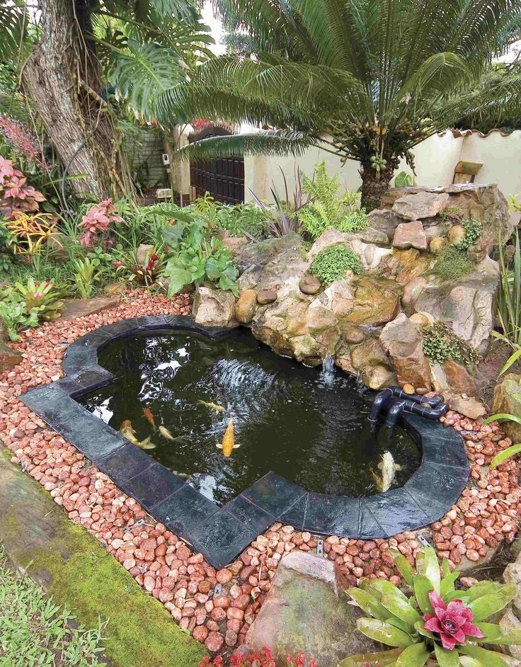 5 Steps to a Perfect Koi Pond