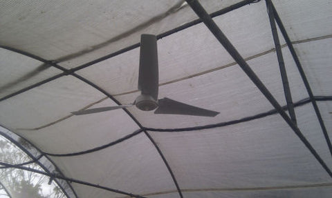 Solar ceiling fans australia case study greenhouse ventilation fan blades correctly oriented the speed control mounted in a weatherproof enclosure the panel mounted at a good angle facing due north aloadofball Image collections