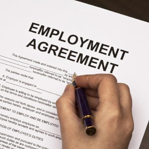 Employment Agreement Standard Employment Agreement