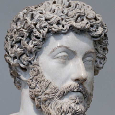 Meditations by Marcus Aurelius (PDF Download)