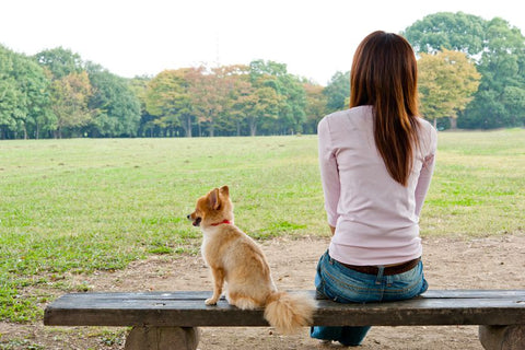 A park bench with a friend who doesn't talk too much is also a good way to practice the art of doing nothing. (Photo: takayuki/Shutterstock)