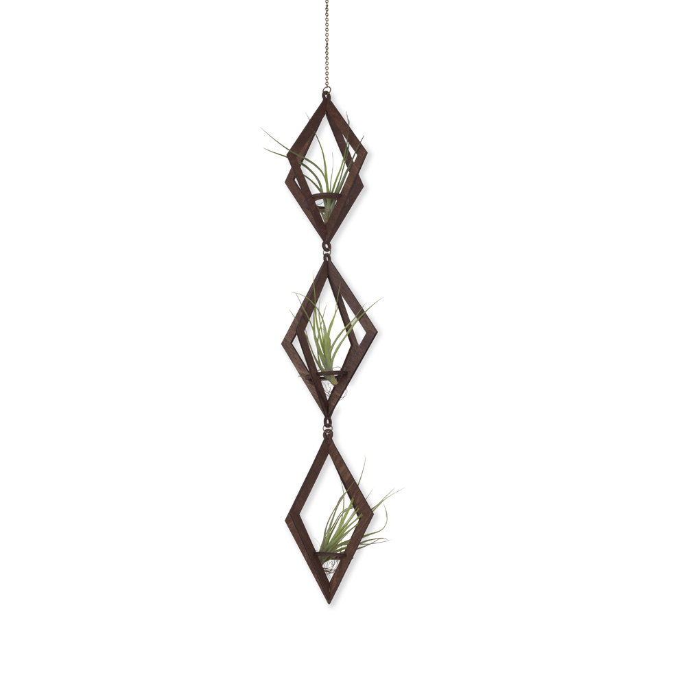 air plant hanger trio >> diamond >> walnut