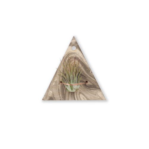 air plant wall hanger >> marbled wood >> laser cut triangle design >> plant included