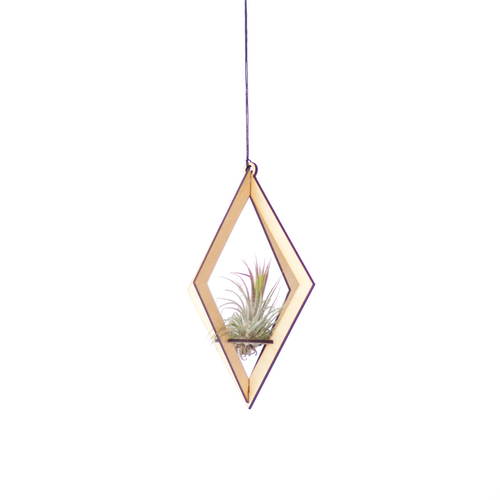 air plant hanger >> diamond >> maple
