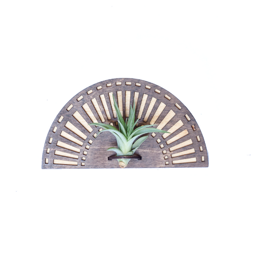 Wood Cut Air Plant Wall Hanger - Single Sunrise