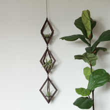 air plant hanger trio >> diamond >>maple