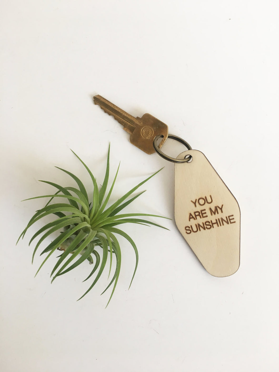 retro key fob >> wooden key chain >> you are my sunshine