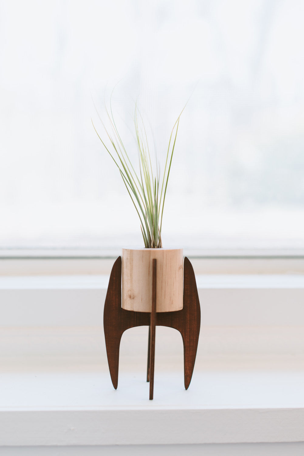 mini plant stand >> mid century >> air plant included