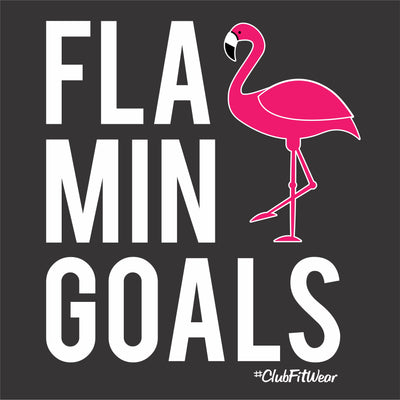 FlaminGOALS