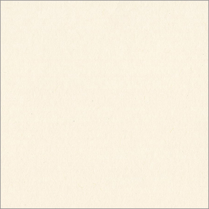 NATURAL 12x12 smooth cardstock - Bazzill Smoothies Collection - off-white in color