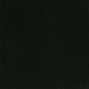 Bazzill Basics-blackbird-jet black cardstock - 12x12 inch - 80 lb - textured cardstock and scrapbook paper