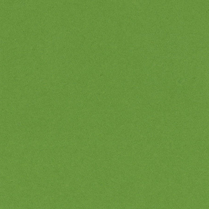 LIME CRUSH 12x12 smooth cardstock - Bazzill Smoothies Collection - dark lime green in color