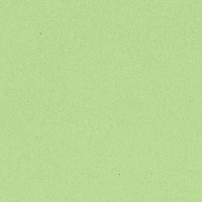 APPLE CRUSH 12x12 smooth cardstock - Bazzill Smoothies Collection - light green in color