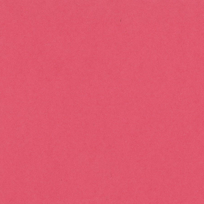 CANDY HEARTS deep pink 12x12 heavy cardstock from Bazzill Card Shoppe line
