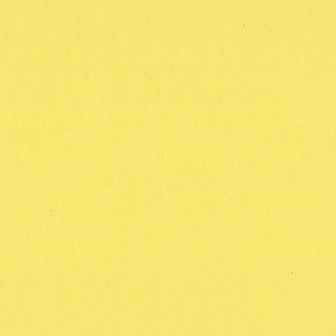 SOUR LEMON bright yellow 12x12 heavy cardstock from Bazzill Card Shoppe line